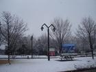 SNOW01212