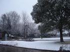 SNOW01213