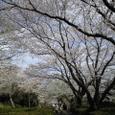 三島・上岩崎公園