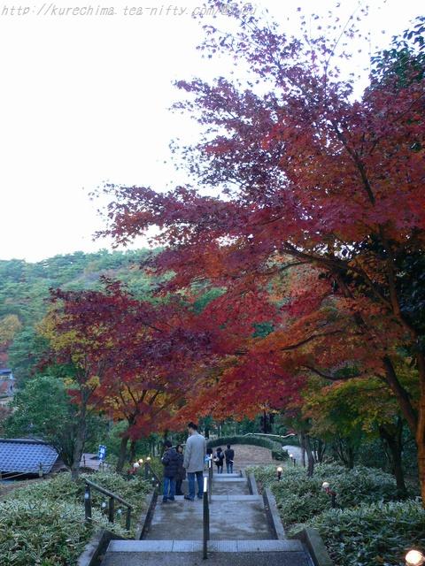 虹の郷の紅