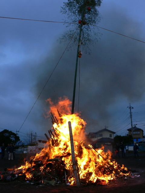 燃え盛る青竹