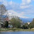 温水地から望む富士