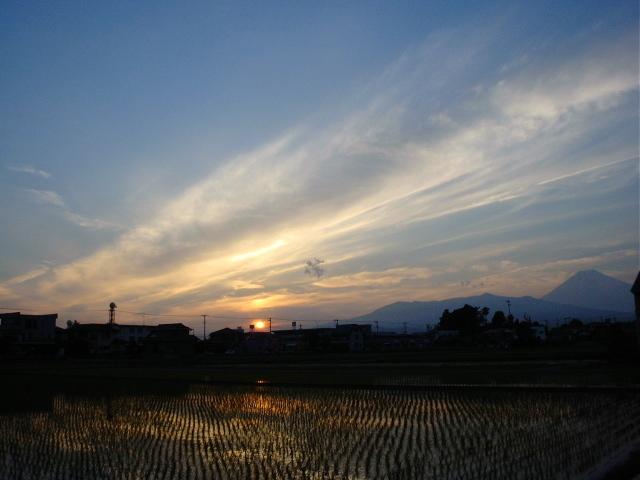 シルエット・Fuji