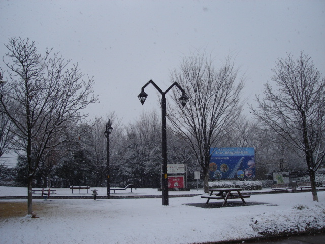 Snow0121