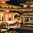 夜菊~薬師院(銀塩版Ⅴ)