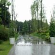 雨降る丘の入り口