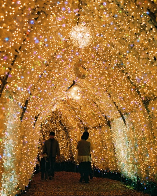 時乃栖の灯り~第二トンネル(銀塩版Ⅲ)