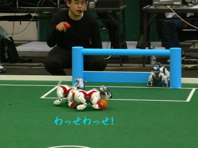 Robo0818