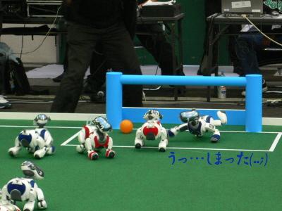 Robo0820