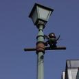 街灯の小悪魔